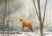 fox, nature, wildlife, artwork, painting, watercolour, trees, snow, winter, pam marchant, wiltshire,